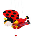 Goki Flying Ladybird