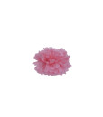 pompom, party, celebrations, kiddie party, decorations, paper hangings, decor, parties