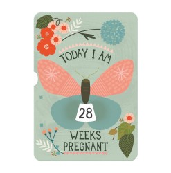 pregnancy,turnwheel,photocards